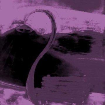 S Street Lamb - Purple